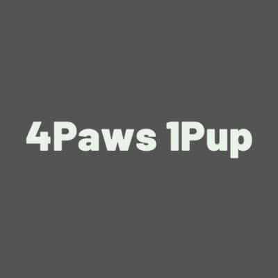 4Paws 1Pup